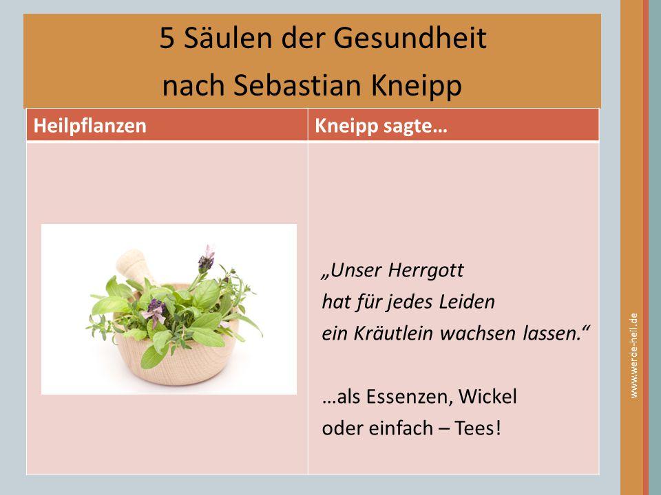 """5 Säulen der Gesundheit nach Sebastian Kneipp HeilpflanzenKneipp sagte… www.werde-heil.de """"Unser Herrgott hat für jedes Leiden ein Kräutlein wachsen l"""