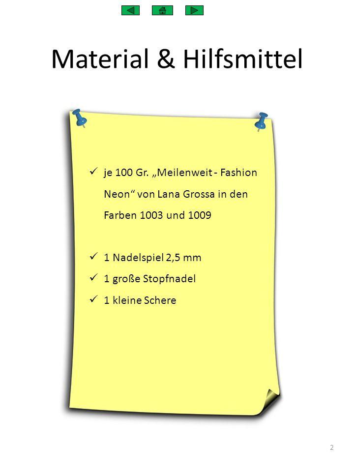 """Material & Hilfsmittel je 100 Gr. """"Meilenweit - Fashion Neon"""" von Lana Grossa in den Farben 1003 und 1009 1 Nadelspiel 2,5 mm 1 große Stopfnadel 1 kle"""