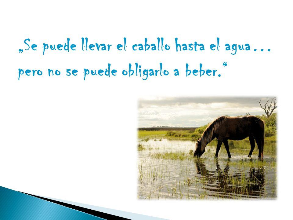 """""""Se puede llevar el caballo hasta el agua… pero no se puede obligarlo a beber."""""""