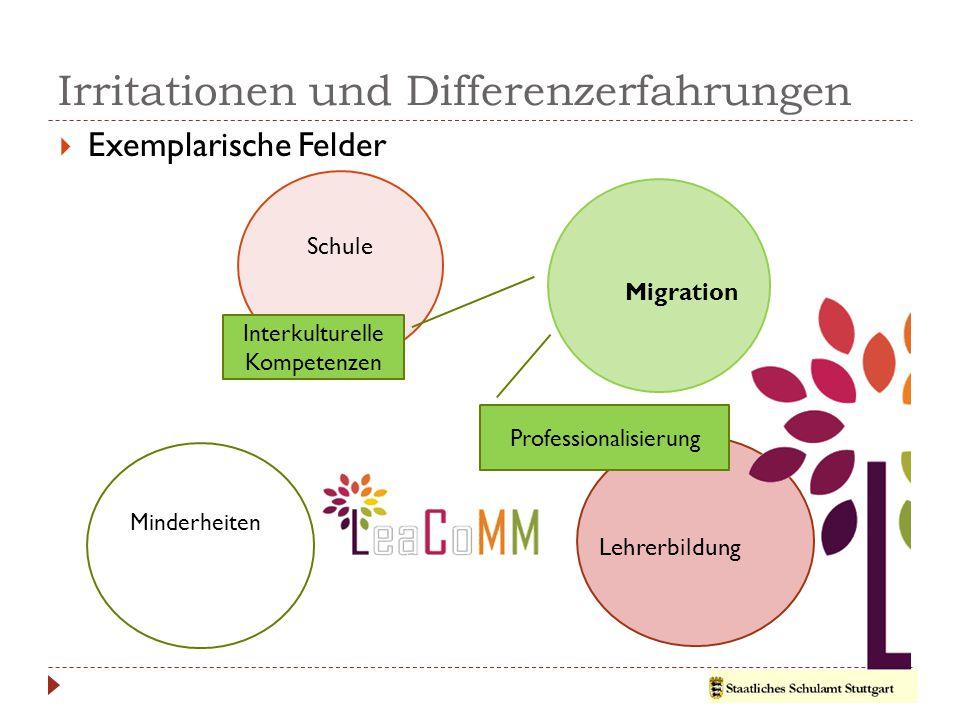Irritationen und Differenzerfahrungen  Exemplarische Felder Schule Migration Lehrerbildung Minderheiten Diversity Management Reflexion & Diskurs