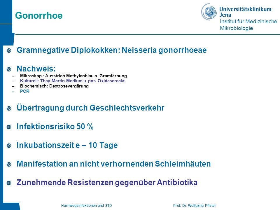 Institut für Medizinische Mikrobiologie Harnwegsinfektionen und STD Prof. Dr. Wolfgang Pfister Gonorrhoe  Gramnegative Diplokokken: Neisseria gonorrh