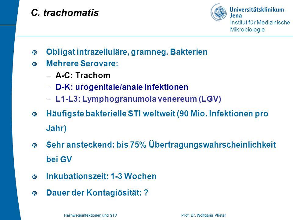 Institut für Medizinische Mikrobiologie Harnwegsinfektionen und STD Prof. Dr. Wolfgang Pfister  Obligat intrazelluläre, gramneg. Bakterien  Mehrere
