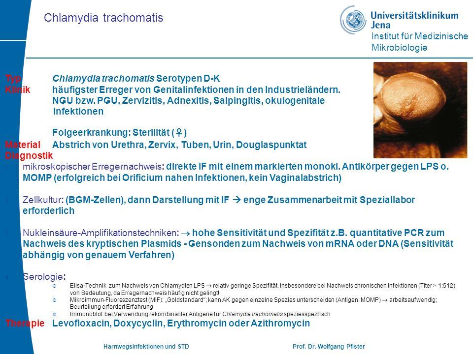 Institut für Medizinische Mikrobiologie Harnwegsinfektionen und STD Prof. Dr. Wolfgang Pfister TypChlamydia trachomatis Serotypen D-K Klinikhäufigster
