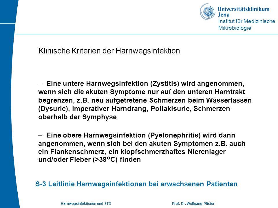 Institut für Medizinische Mikrobiologie Harnwegsinfektionen und STD Prof. Dr. Wolfgang Pfister Klinische Kriterien der Harnwegsinfektion –Eine untere