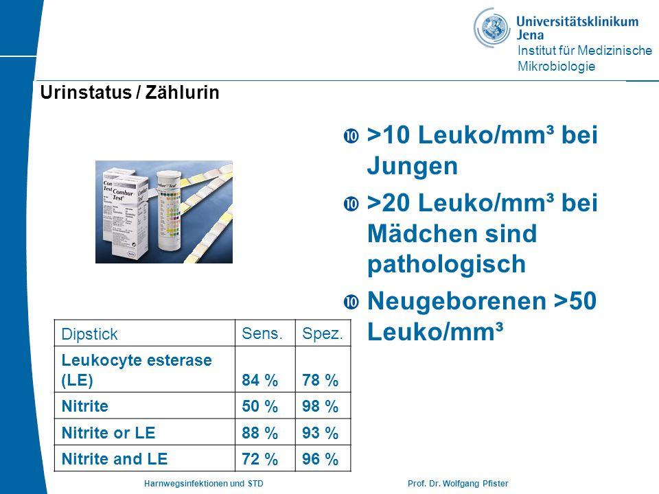 Institut für Medizinische Mikrobiologie Harnwegsinfektionen und STD Prof. Dr. Wolfgang Pfister Urinstatus / Zählurin  >10 Leuko/mm³ bei Jungen  >20