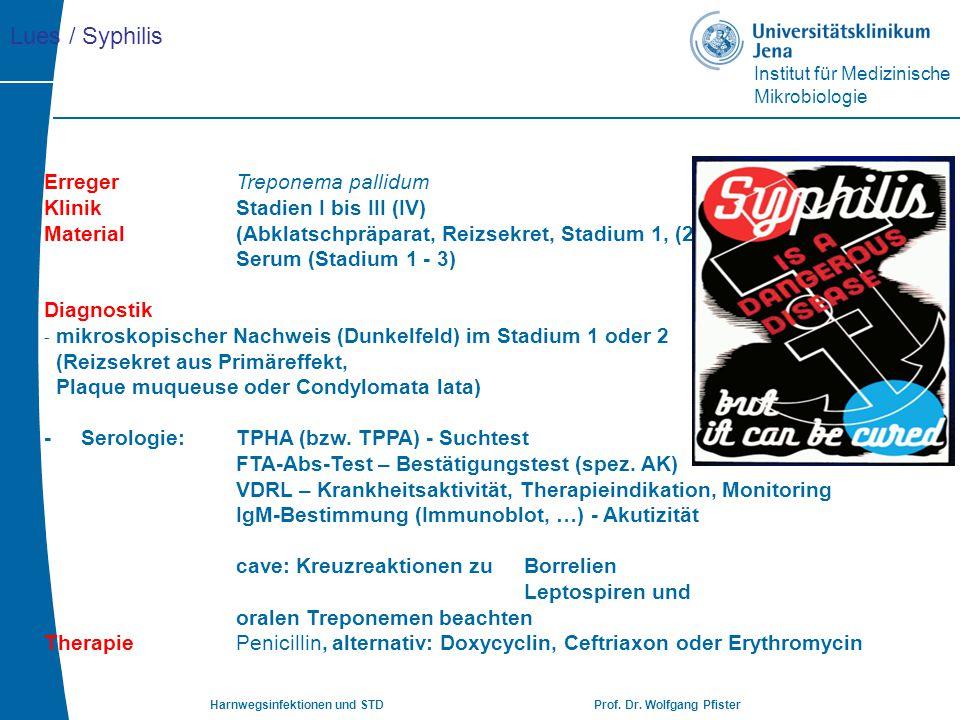 Institut für Medizinische Mikrobiologie Harnwegsinfektionen und STD Prof. Dr. Wolfgang Pfister Erreger Treponema pallidum KlinikStadien I bis III (IV)