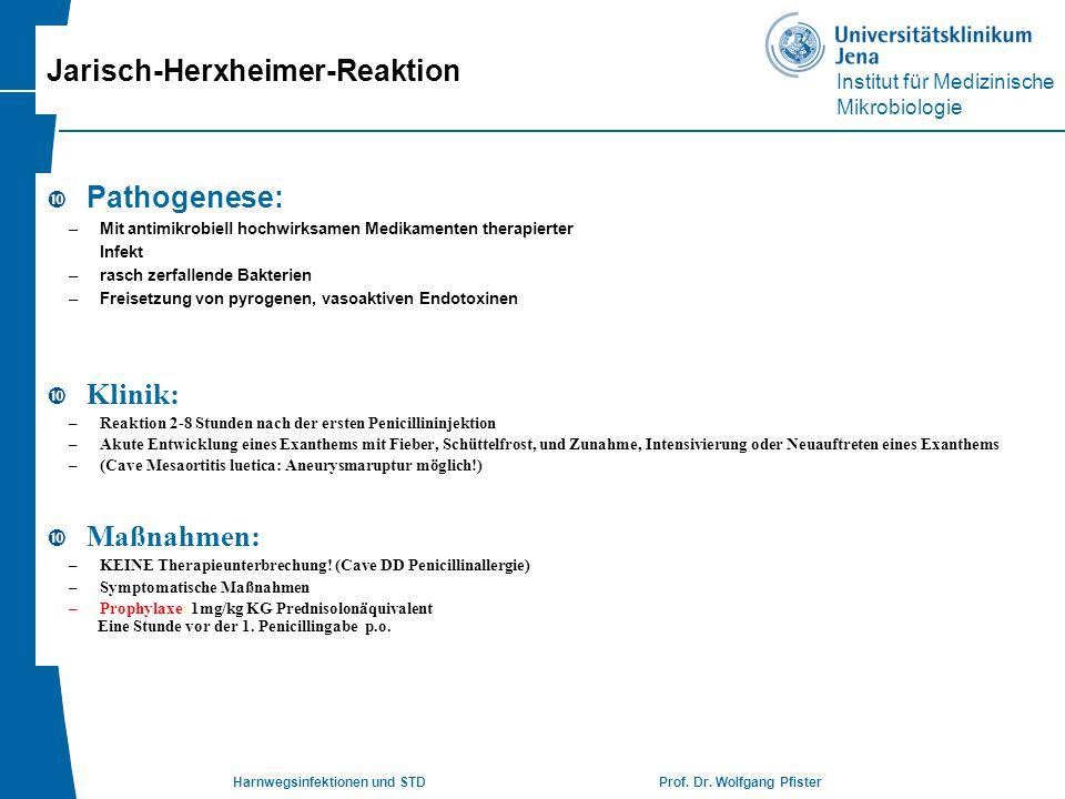 Institut für Medizinische Mikrobiologie Harnwegsinfektionen und STD Prof. Dr. Wolfgang Pfister Jarisch-Herxheimer-Reaktion  Pathogenese: –Mit antimik