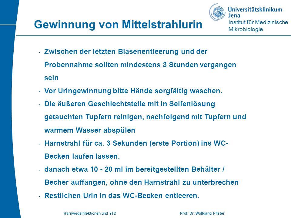 Institut für Medizinische Mikrobiologie Harnwegsinfektionen und STD Prof. Dr. Wolfgang Pfister - Zwischen der letzten Blasenentleerung und der Probenn