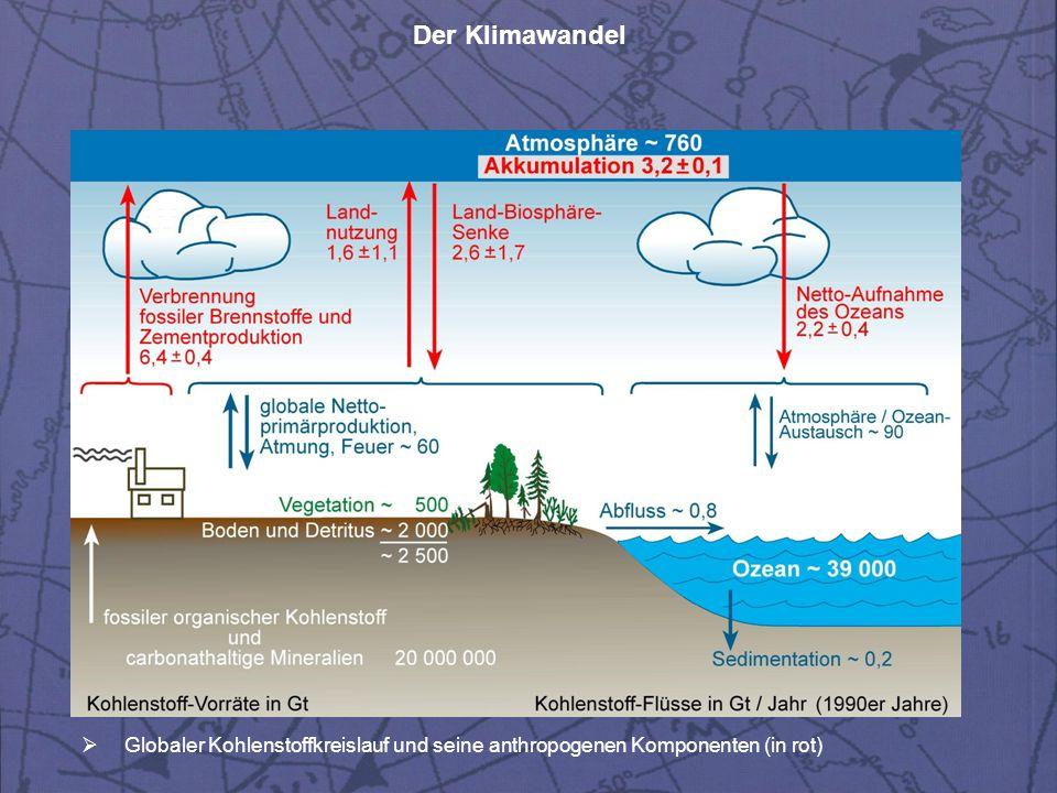 Der Klimawandel  Globaler Kohlenstoffkreislauf und seine anthropogenen Komponenten (in rot)