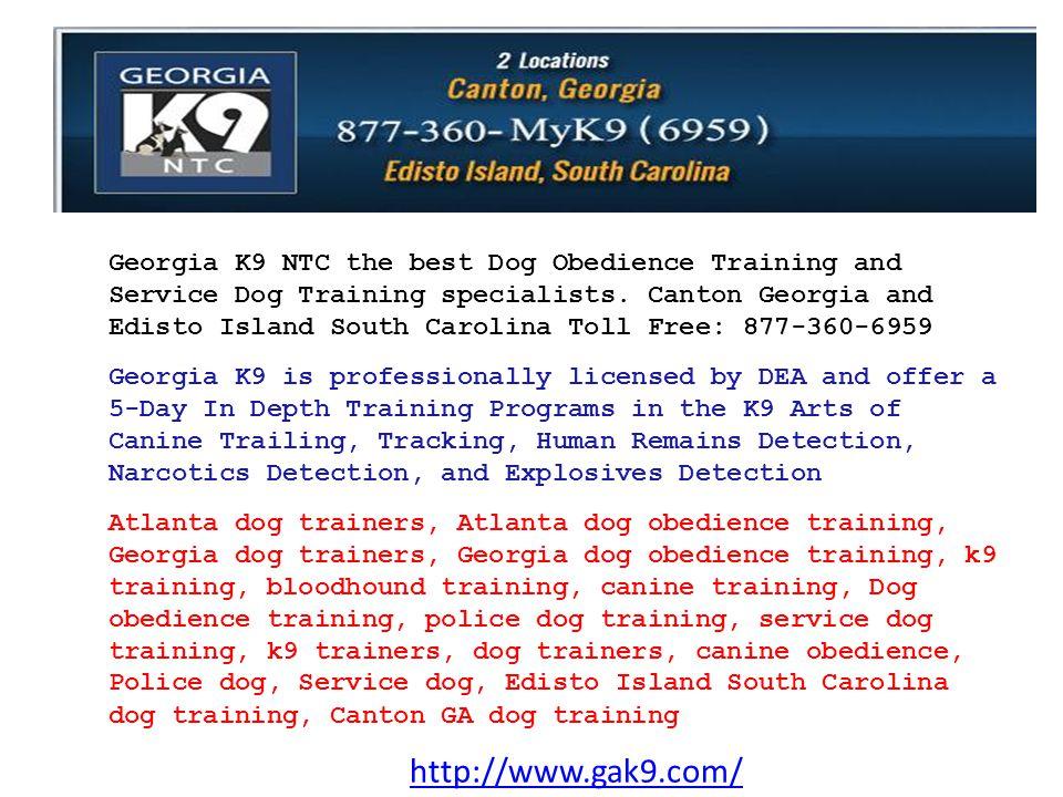 http://www.gak9.com/ About Us Georgia K9 National Training Center, the South's premier K9 training company.