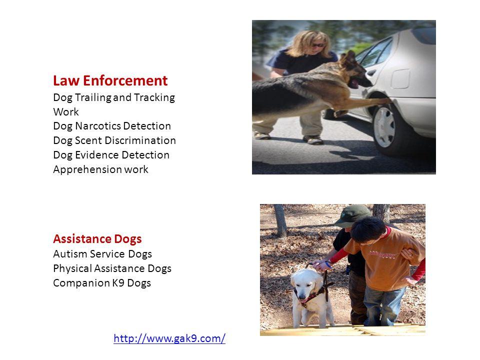 http://www.gak9.com/ Law Enforcement Dog Trailing and Tracking Work Dog Narcotics Detection Dog Scent Discrimination Dog Evidence Detection Apprehensi