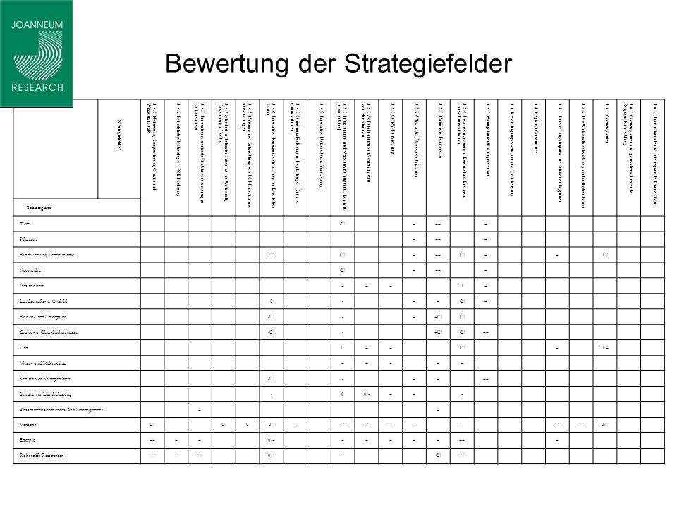 Bewertung der Strategiefelder Strategiefelder 3.1.1 Netzwerke, Kooperationen, Cluster undWissenstransfer3.1.2 Betriebliche Technologie-, F&E-Förderung3.1.3 Innovationsorientierte Strukturverbesserung inUnternehmen3.1.4 Standort- u.
