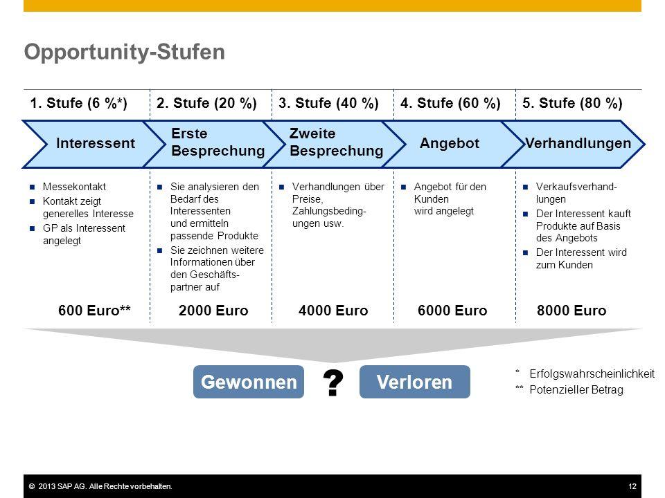 ©2013 SAP AG. Alle Rechte vorbehalten.12 Opportunity-Stufen Gewonnen 1. Stufe (6 %*)2. Stufe (20 %)3. Stufe (40 %)4. Stufe (60 %)5. Stufe (80 %) Verlo