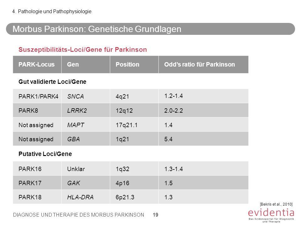 Morbus Parkinson: Genetische Grundlagen 4. Pathologie und Pathophysiologie DIAGNOSE UND THERAPIE DES MORBUS PARKINSON 19 [Bekris et al., 2010] Suszept