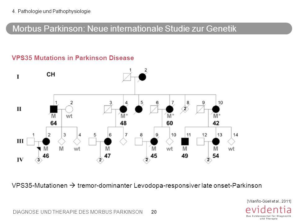 Morbus Parkinson: Neue internationale Studie zur Genetik 4. Pathologie und Pathophysiologie [Vilariño-Güell et al., 2011] DIAGNOSE UND THERAPIE DES MO
