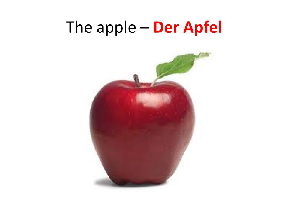 The apple – Der Apfel