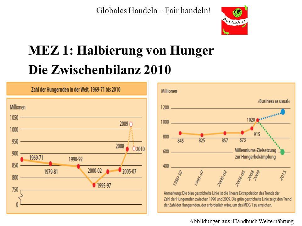 Globales Handeln – Fair handeln! MEZ 1: Halbierung von Hunger Die Zwischenbilanz 2010 Abbildungen aus: Handbuch Welternährung