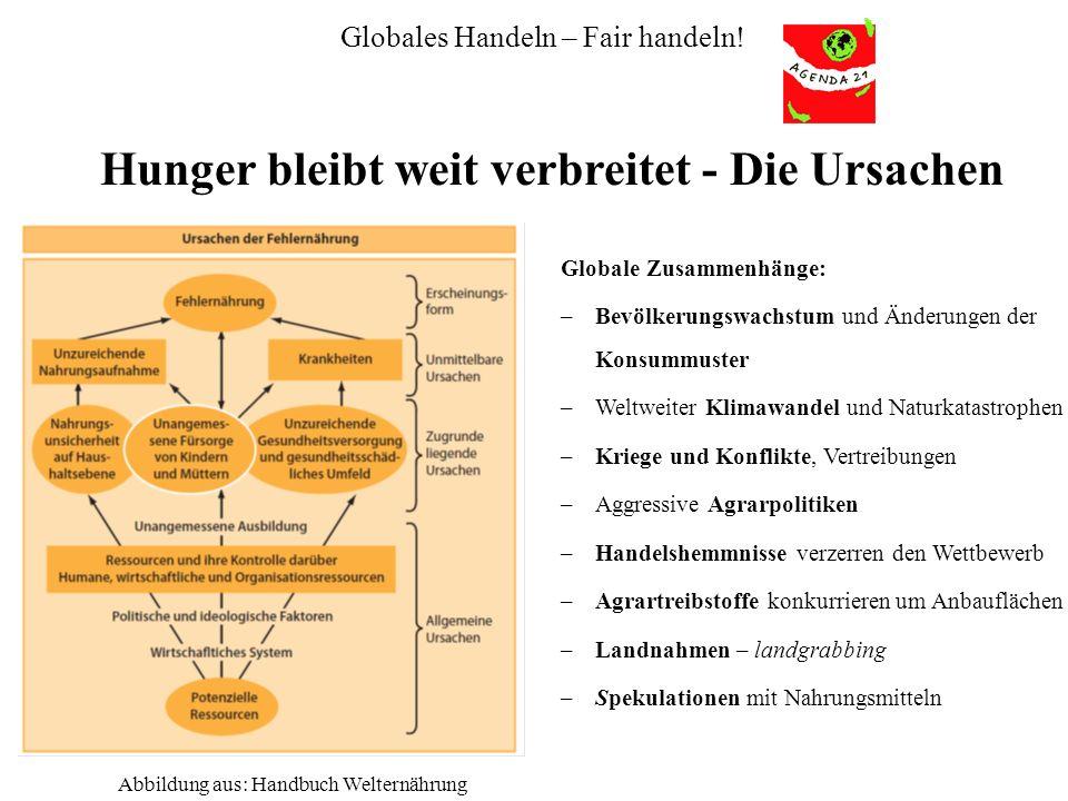 Globales Handeln – Fair handeln! Hunger bleibt weit verbreitet - Die Ursachen Abbildung aus: Handbuch Welternährung Globale Zusammenhänge: –Bevölkerun