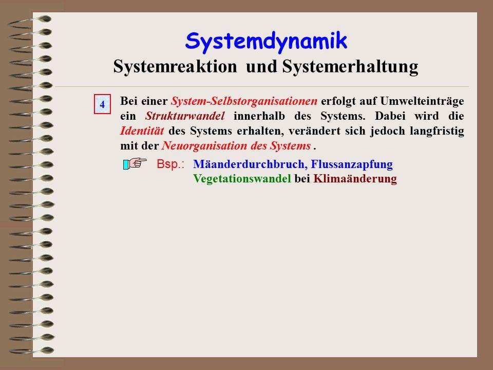 Systemdynamik Systemreaktion und Systemerhaltung Bei einer System-Selbstorganisationen erfolgt auf Umwelteinträge ein Strukturwandel innerhalb des Sys