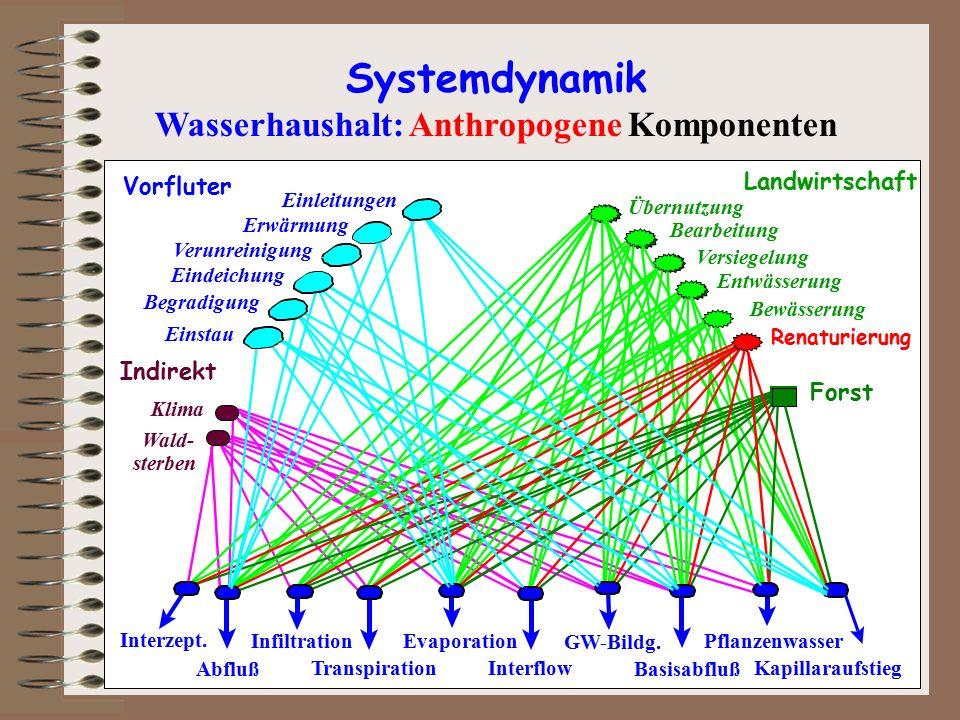 Wald- Klima Indirekt sterben Landwirtschaft Übernutzung Bearbeitung Entwässerung Versiegelung Bewässerung Forst Renaturierung Systemdynamik Wasserhaus