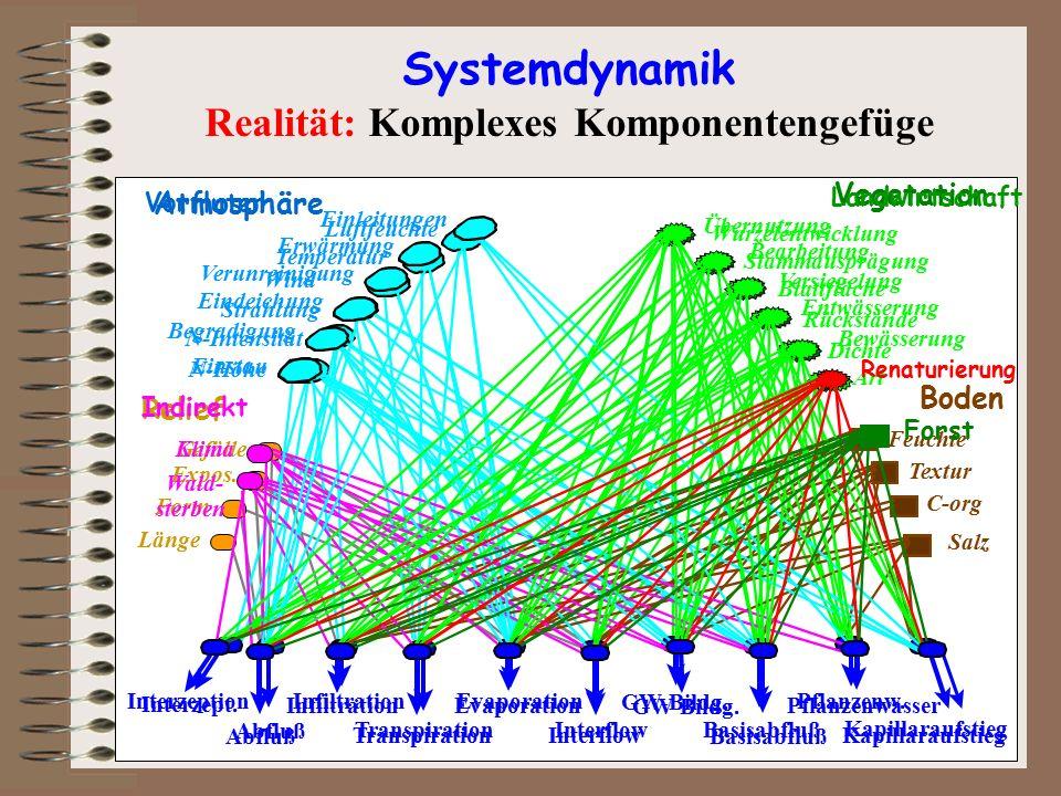 Systemdynamik Systemreaktion und Systemerhaltung Für die Systemanalyse ist es von großer Bedeutung, dass untersucht wird, ob durch den Umwelteintrag die Wirkungsstruktur des Systems geändert wird oder nicht.