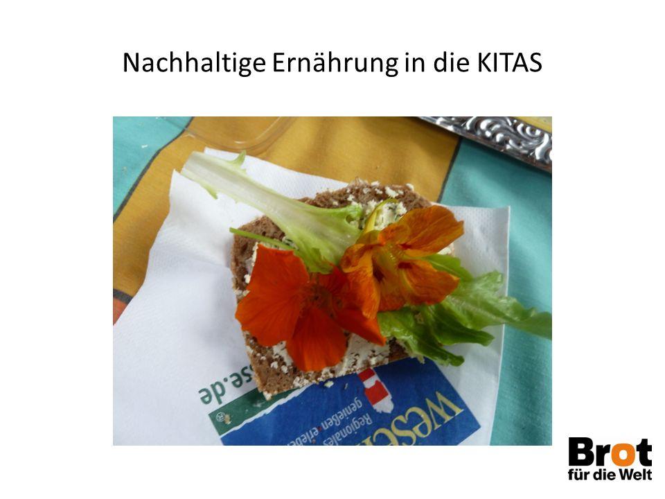 """Eine Projektidee: Biopaten für die Mehrkosten bei 100 % Bio München hat das erfolgreich geführt Paten, denen 100% Bio in Kitas wichtig ist, zahlen den Mehrkostenanteil In München € 0,34 pro Essen, hier weniger, wird gerade errechnet Entgegenkommen des Naturkostgroßhandels """"Naturkostkontor"""