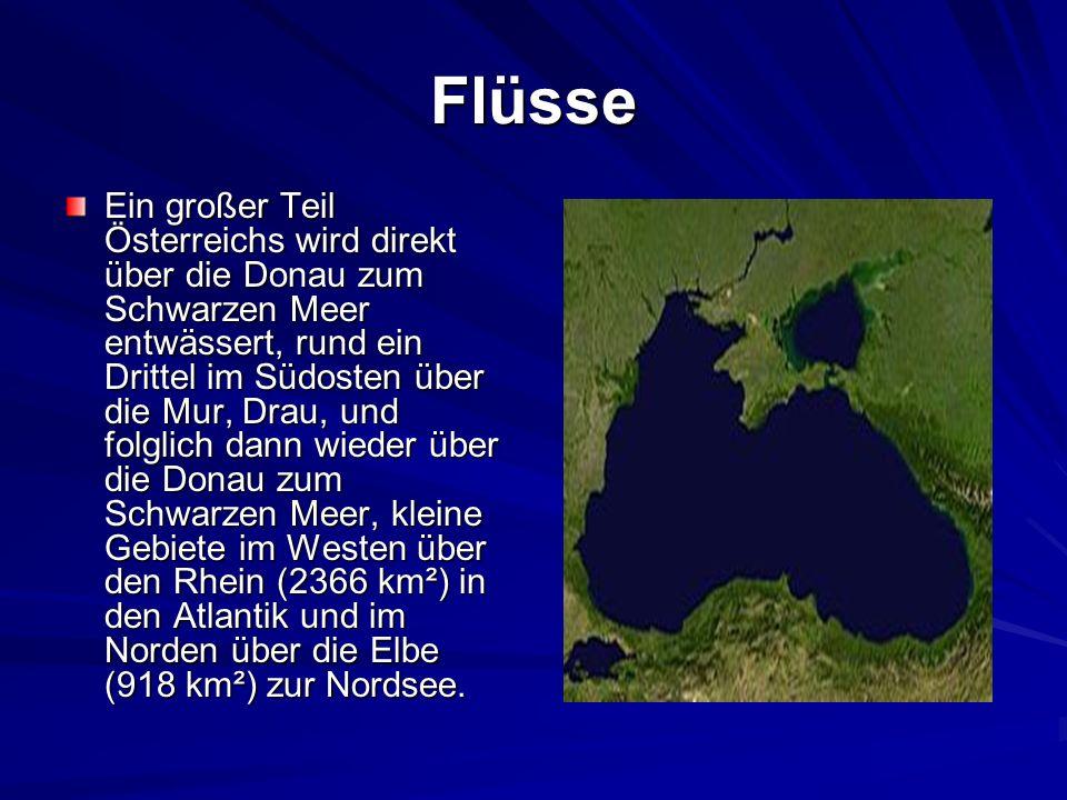 Flüsse Ein großer Teil Österreichs wird direkt über die Donau zum Schwarzen Meer entwässert, rund ein Drittel im Südosten über die Mur, Drau, und folglich dann wieder über die Donau zum Schwarzen Meer, kleine Gebiete im Westen über den Rhein (2366 km²) in den Atlantik und im Norden über die Elbe (918 km²) zur Nordsee.