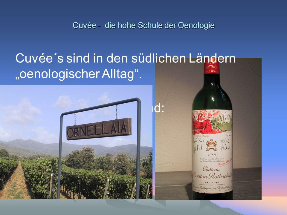 """Cuvée - die hohe Schule der Oenologie Cuvée´s sind in den südlichen Ländern """"oenologischer Alltag"""". Klassische Beispiele sind: Bordeaux, Champagne, El"""