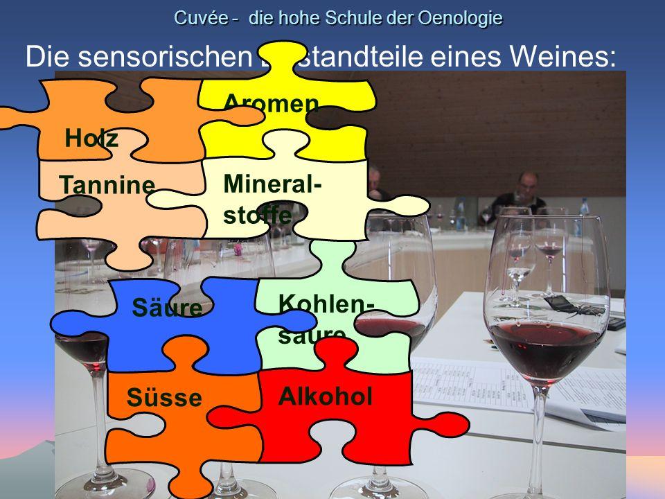 Cuvée - die hohe Schule der Oenologie Die sensorischen Bestandteile eines Weines: Kohlen- säure Alkohol Süsse Säure Aromen Mineral- stoffe Tannine Hol