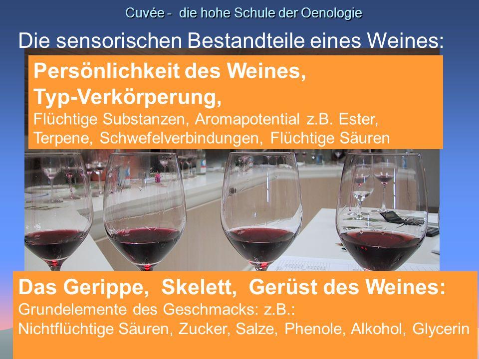 Cuvée - die hohe Schule der Oenologie Die sensorischen Bestandteile eines Weines: Persönlichkeit des Weines, Typ-Verkörperung, Flüchtige Substanzen, A