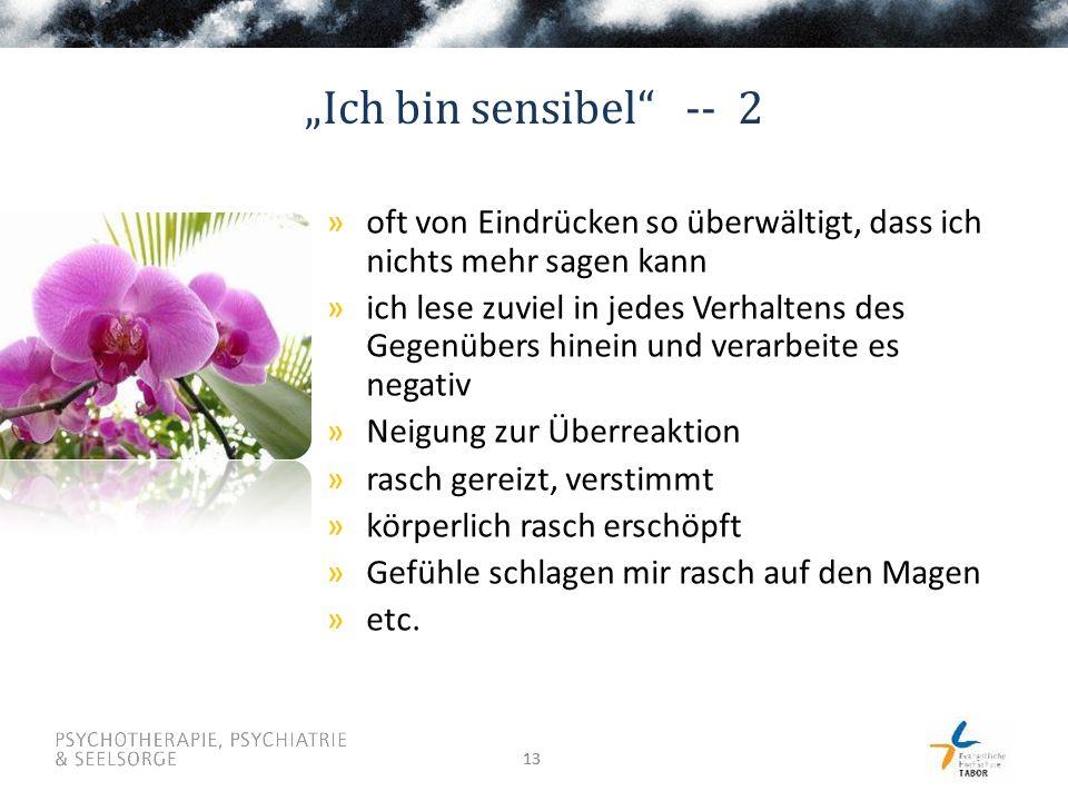 """13 """"Ich bin sensibel"""" -- 2 »oft von Eindrücken so überwältigt, dass ich nichts mehr sagen kann »ich lese zuviel in jedes Verhaltens des Gegenübers hin"""