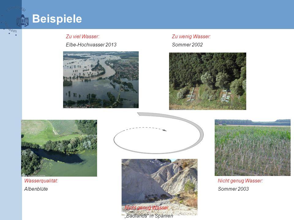 """Beispiele Nicht genug Wasser: Sommer 2003 Nicht genug Wasser """"Badlands"""" in Spanien Wasserqualität: Albenblüte Zu viel Wasser: Elbe-Hochwasser 2013 Zu"""