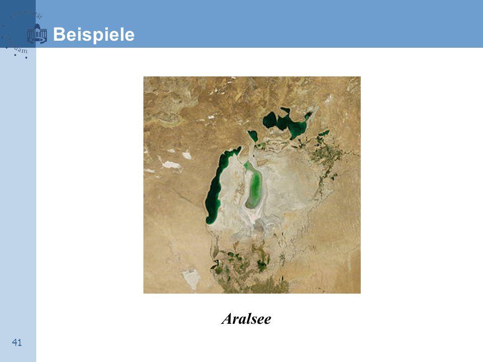 41 Beispiele Aralsee