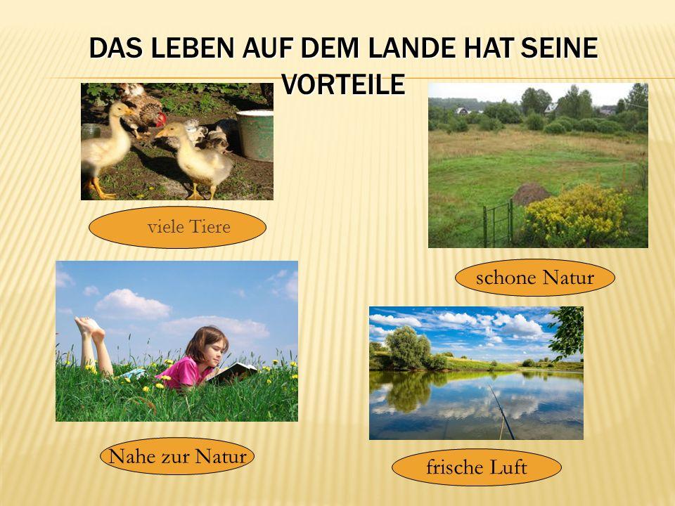 DAS LEBEN AUF DEM LANDE HAT SEINE VORTEILE  viele Tiere schone Natur frische Luft Nahe zur Natur