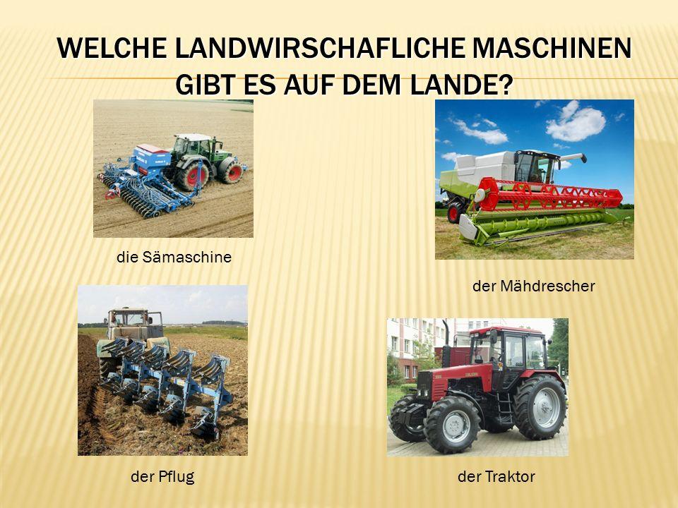 WELCHE LANDWIRSCHAFLICHE MASCHINEN GIBT ES AUF DEM LANDE? der Mähdrescher die Sämaschine der Pflugder Traktor