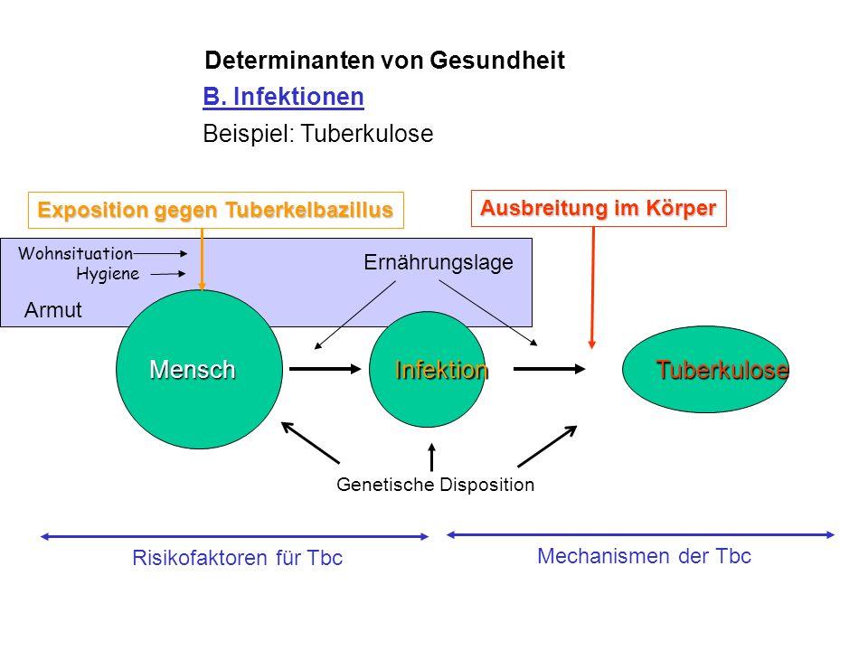 Determinanten von Gesundheit Sterberate an Tuberkulose, England & Wales, 1840 - 1968 Entdeckung des Mycobacterium Tuberculosis Tuberkulostatika BCG-Im