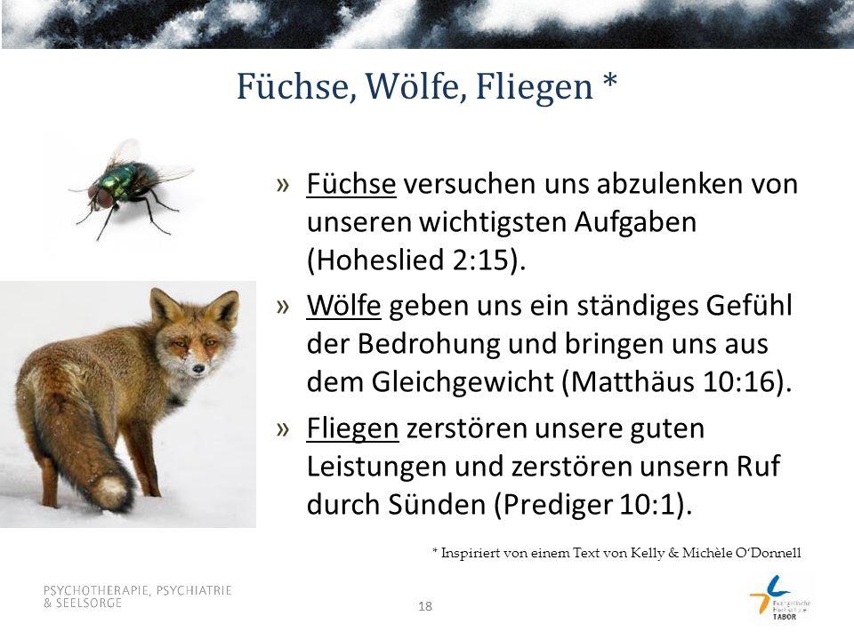 18 Füchse, Wölfe, Fliegen * »Füchse versuchen uns abzulenken von unseren wichtigsten Aufgaben (Hoheslied 2:15). »Wölfe geben uns ein ständiges Gefühl