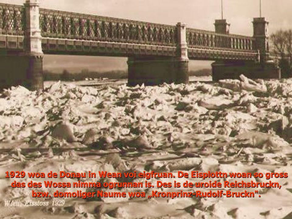 1929 woa de Donau in Wean voi eigfruan.De Eisplottn woan so gross das des Wossa nimma ogrunnan is.