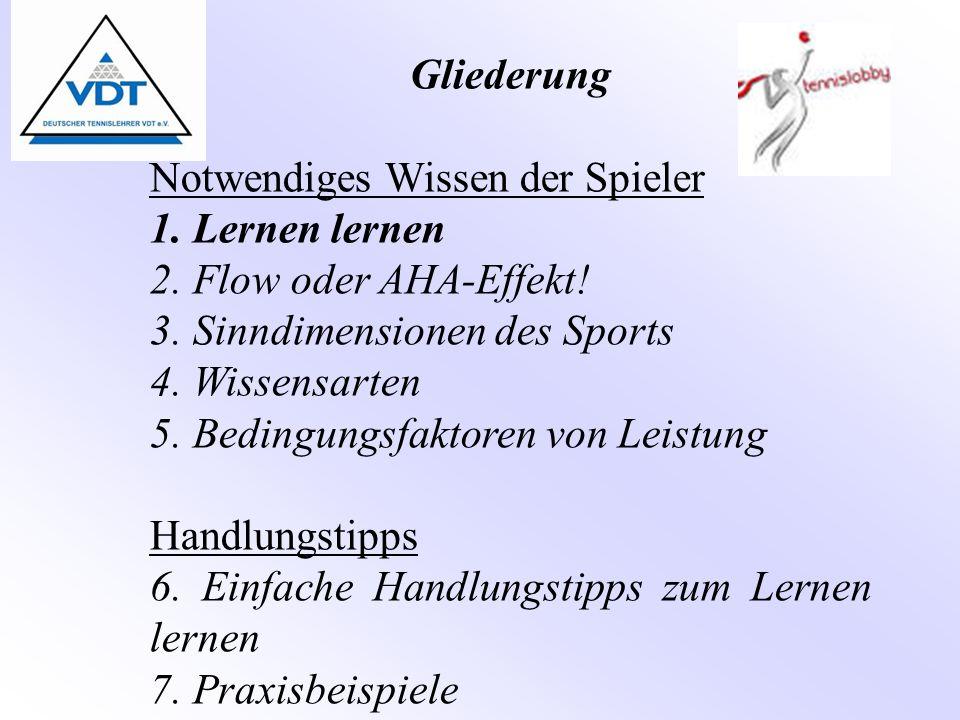 Gliederung Notwendiges Wissen der Spieler 1. Lernen lernen 2. Flow oder AHA-Effekt! 3. Sinndimensionen des Sports 4. Wissensarten 5. Bedingungsfaktore