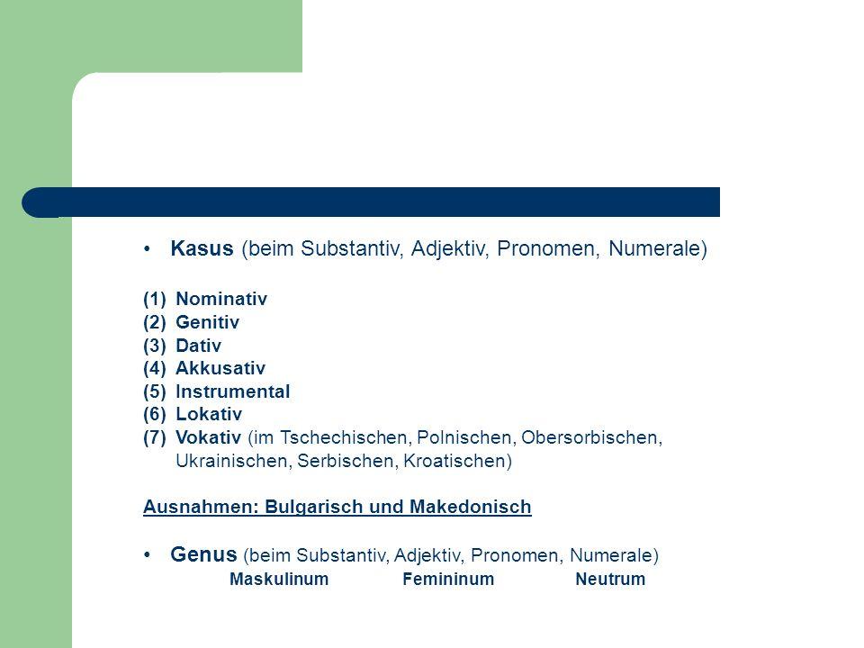 Morphologische Besonderheiten Die meisten slavischen Sprachen sind durch einen großen Formenreichtum der einzelnen Wortarten charakterisiert  stark flektierende Sprachen A: Nominalkategorien: Numerus (beim Substantiv, Adjektiv, Pronomen, Verb) (1) Singular(2) Plural(3) Dual книга книгиnur im Slovenischen und Sorbischen kniha knihy