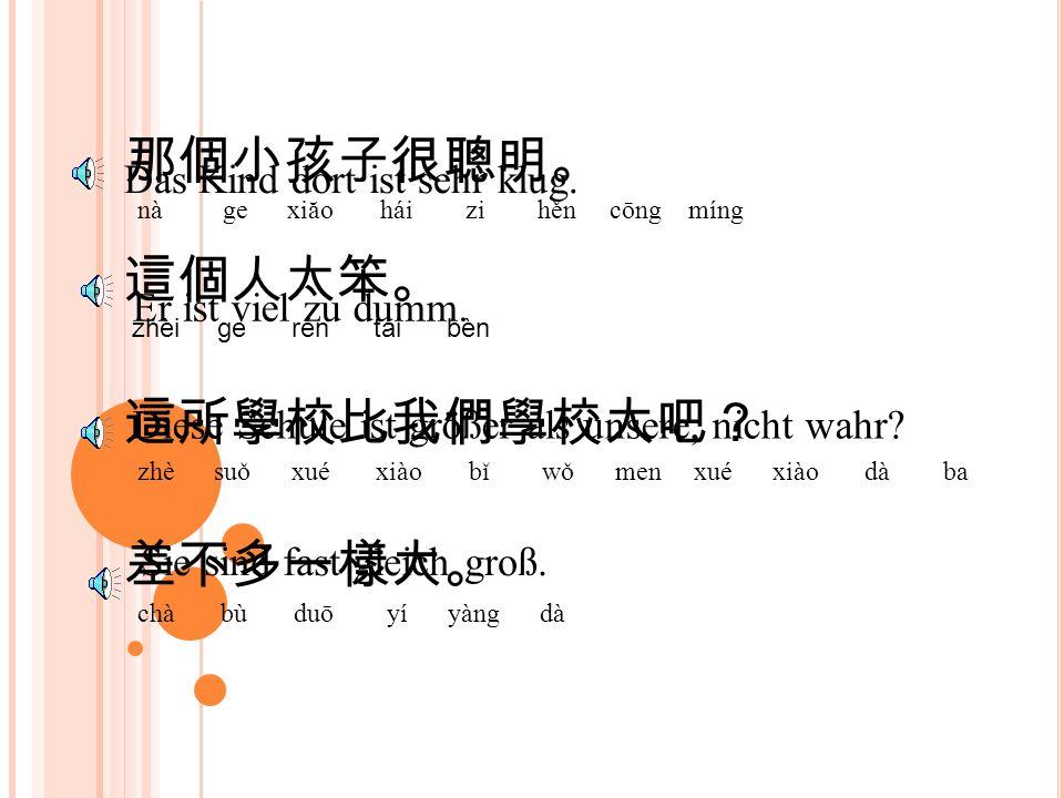 那個小孩子很聰明。 nà ge xiăo hái zi hěn cōng míng Das Kind dort ist sehr klug.
