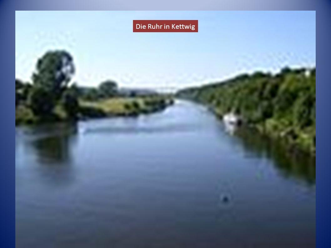 Die Ruhr in Kettwig