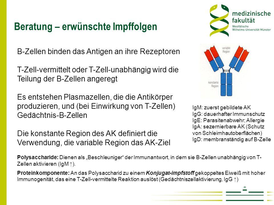 Beratung – erwünschte Impffolgen IgM: zuerst gebildete AK IgG: dauerhafter Immunschutz IgE: Parasitenabwehr; Allergie IgA: sezernierbare AK (Schutz vo