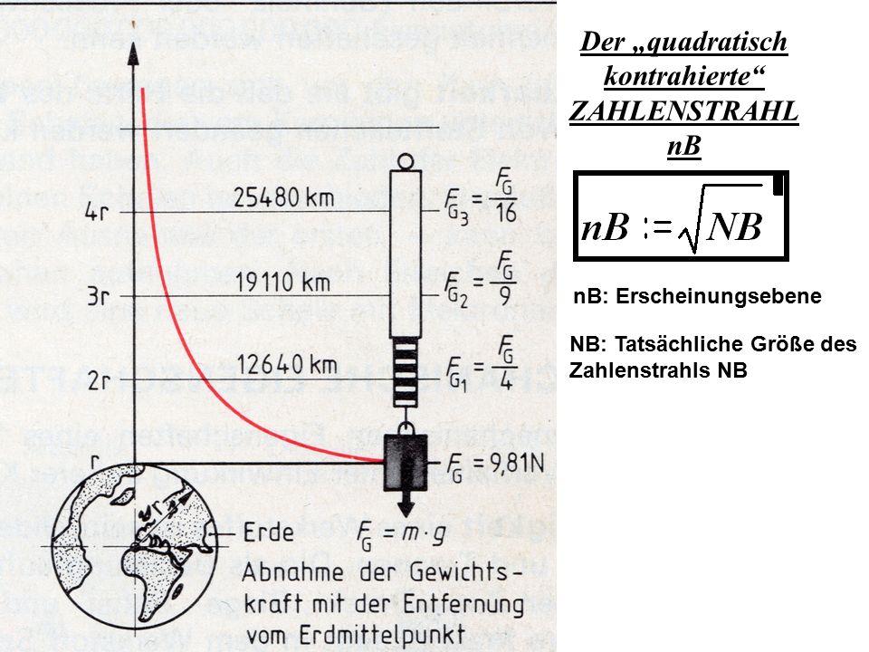 """Der """"quadratisch kontrahierte"""" ZAHLENSTRAHL nB nB: Erscheinungsebene NB: Tatsächliche Größe des Zahlenstrahls NB"""
