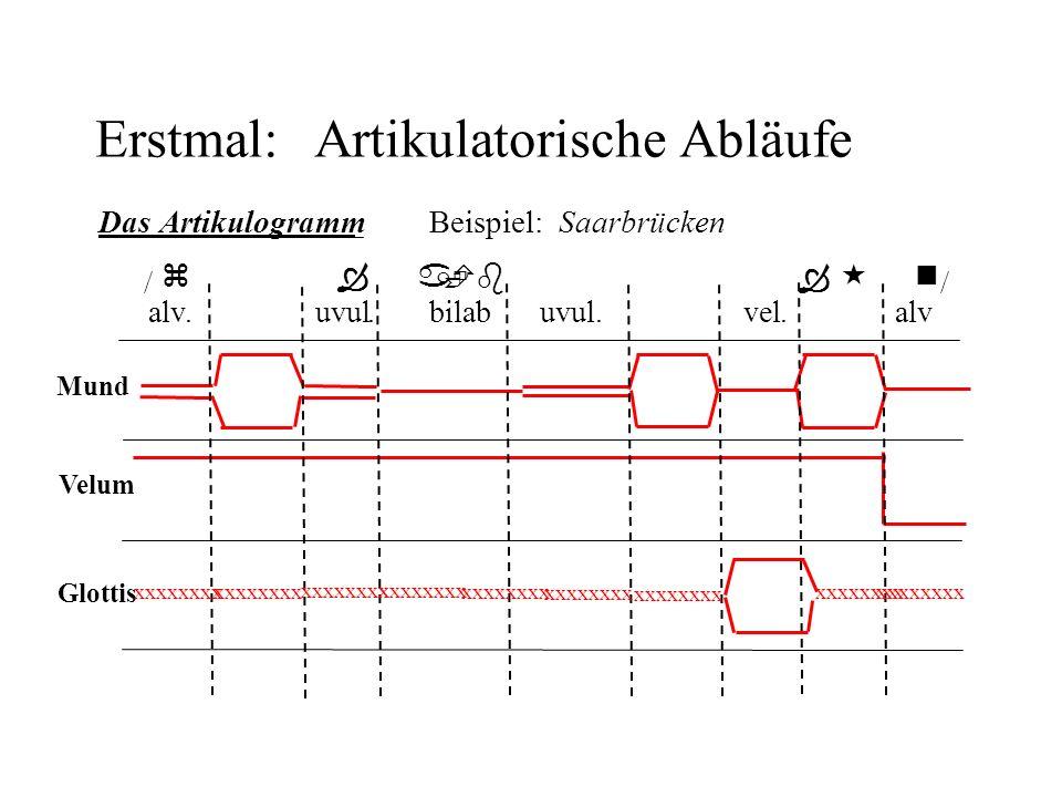 Erstmal:Artikulatorische Abläufe Mund Velum Glottis DasArtikulogramm Beispiel: Saarbrücken / z a    b  Y k«n / alv.uvul.bilab.uvul.vel.alv xxxxxxx