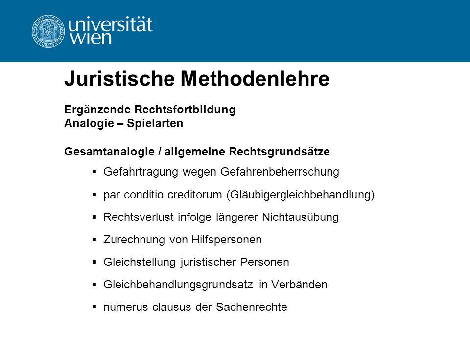 Juristische Methodenlehre Ergänzende Rechtsfortbildung Analogie – Spielarten Gesamtanalogie / allgemeine Rechtsgrundsätze  Gefahrtragung wegen Gefahr