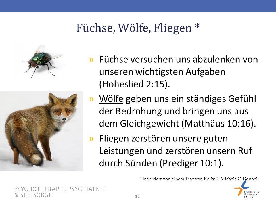 11 Füchse, Wölfe, Fliegen * »Füchse versuchen uns abzulenken von unseren wichtigsten Aufgaben (Hoheslied 2:15).