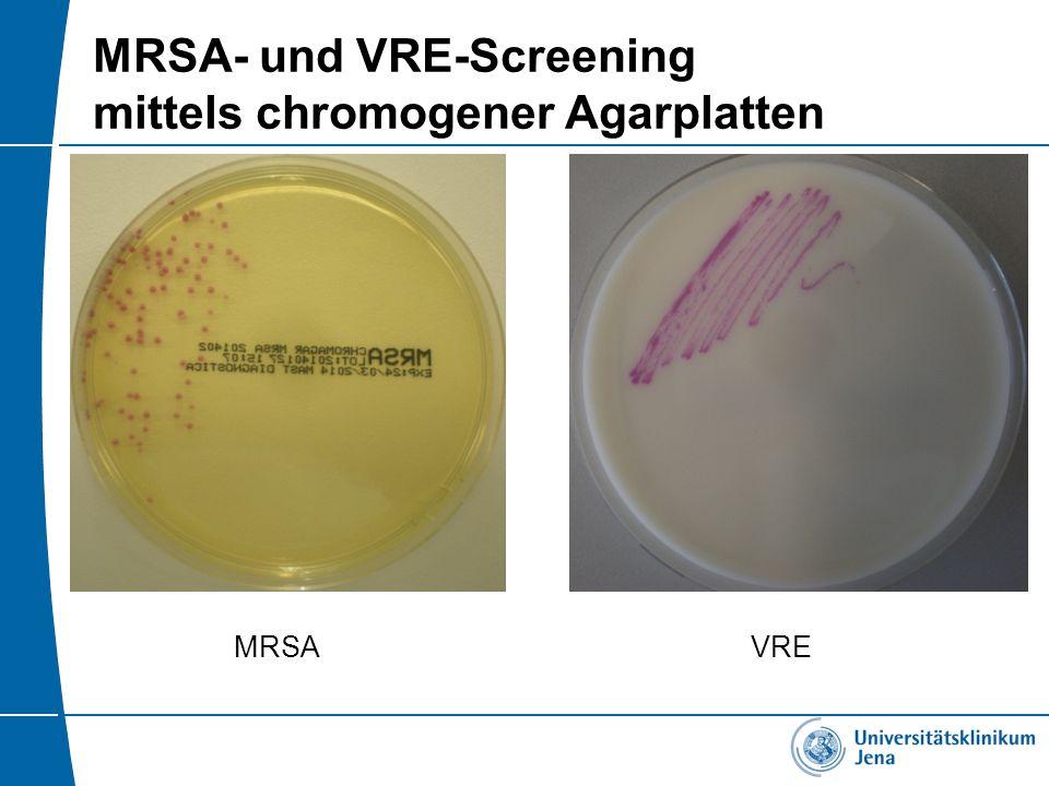 MRSA- und VRE-Screening mittels chromogener Agarplatten MRSAVRE
