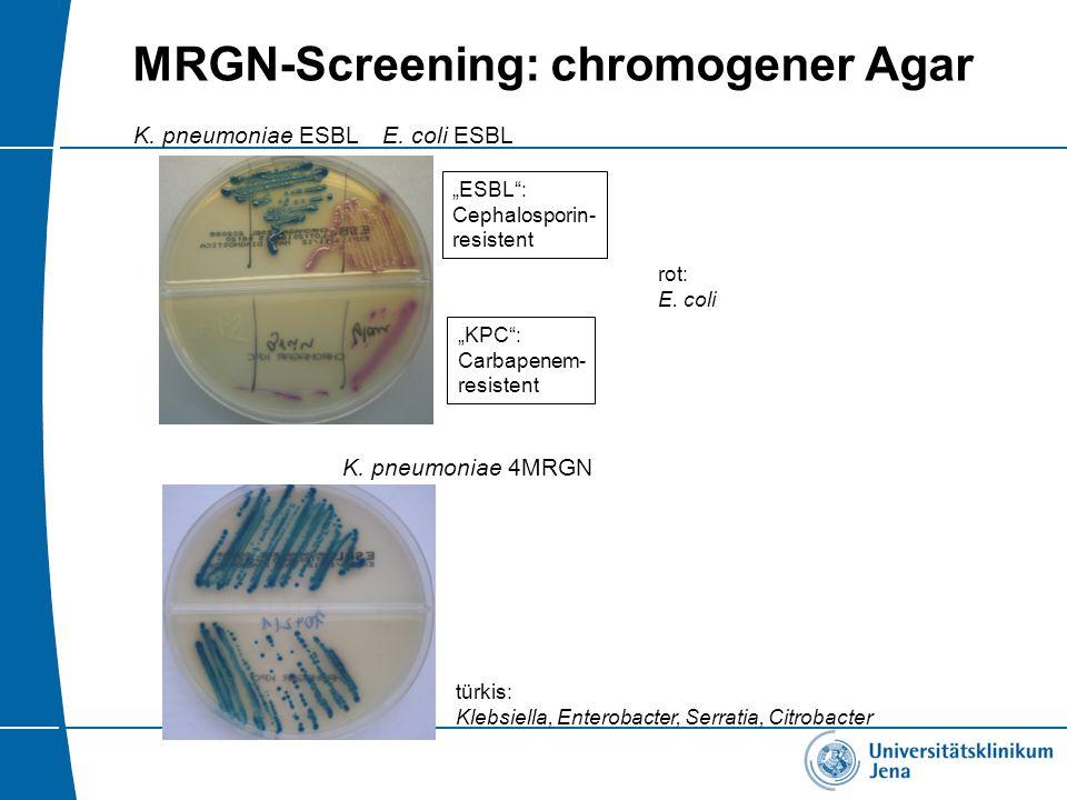 "MRGN-Screening: chromogener Agar K. pneumoniae ESBL ""ESBL"": Cephalosporin- resistent ""KPC"": Carbapenem- resistent E. coli ESBL K. pneumoniae 4MRGN tür"