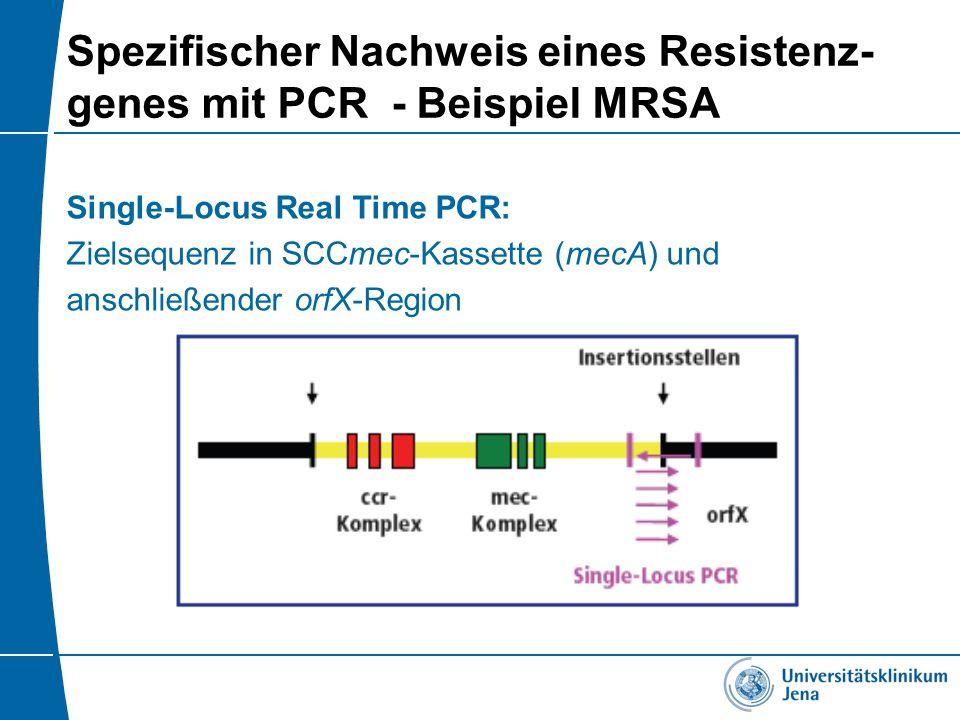 Spezifischer Nachweis eines Resistenz- genes mit PCR - Beispiel MRSA Single-Locus Real Time PCR: Zielsequenz in SCCmec-Kassette (mecA) und anschließen